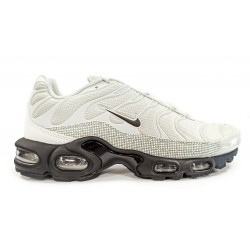 Nike Air Max Plus CT2542 001